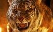 Księga dżungli - plakaty  - Zdjęcie nr 1