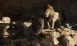 Król Lew 2019 - zdjęcia z filmu  - Zdjęcie nr 3