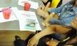 Szkoła w Rosji uczy... seksu oralnego  - Zdjęcie nr 5