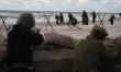 Tajemnica Westerplatte  - Zdjęcie nr 6