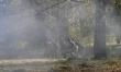 Tajemnica Westerplatte  - Zdjęcie nr 11