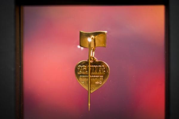 12. edycja Złotych Serduszek - 17. Finał WOŚP - styczeń 2009