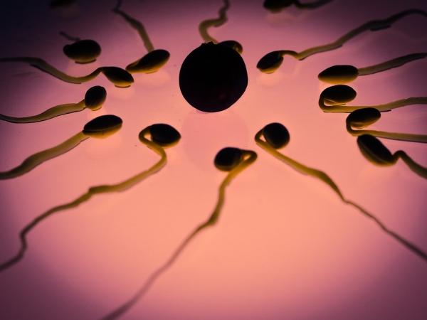 Antydepresyjna sperma