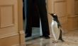 Pan Popper i jego pingwiny  - Zdjęcie nr 5