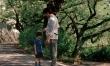 Jak ojciec i syn  - Zdjęcie nr 5
