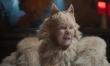 Koty - zdjęcia z filmu  - Zdjęcie nr 4