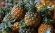 Ananas - smak tropików