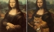 Memy ze śmiesznymi kotami  - Zdjęcie nr 3