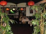 Haj Fong Tropical - zdjęcie nr 101139