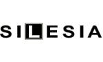 Logo: Ośrodek Szkolenia Kierowców Silesia