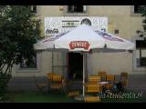 Zyg Zag Pub - zdjęcie nr 242289