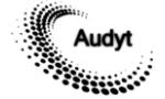 Logo Koło Naukowe Rewizji Finansowej Audyt