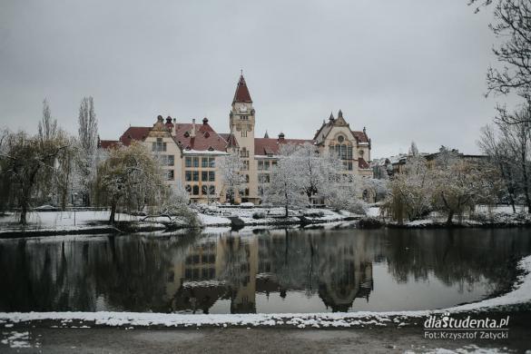Zima zawitała do objętego kwarantanną Wrocławia