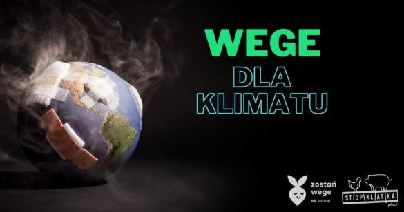 Wege dla klimatu - manifestacja w Łodzi