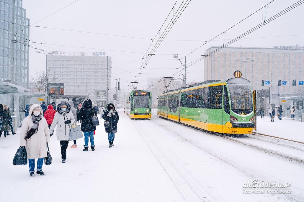Atak zimy w Polsce - zdjęcie nr 1