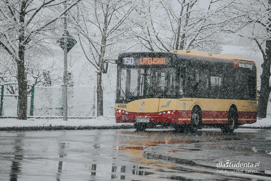 Zima zawitała do objętego kwarantanną Wrocławia - zdjęcie nr 1524535