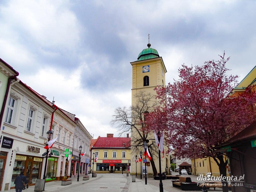 Wiosna w Rzeszowie - zdjęcie nr 1558973