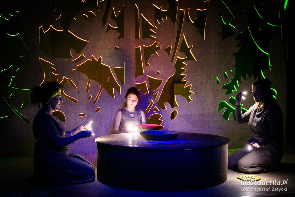 Wrocławski Teatr Lalek: Dżungla  - zdjęcie nr 2