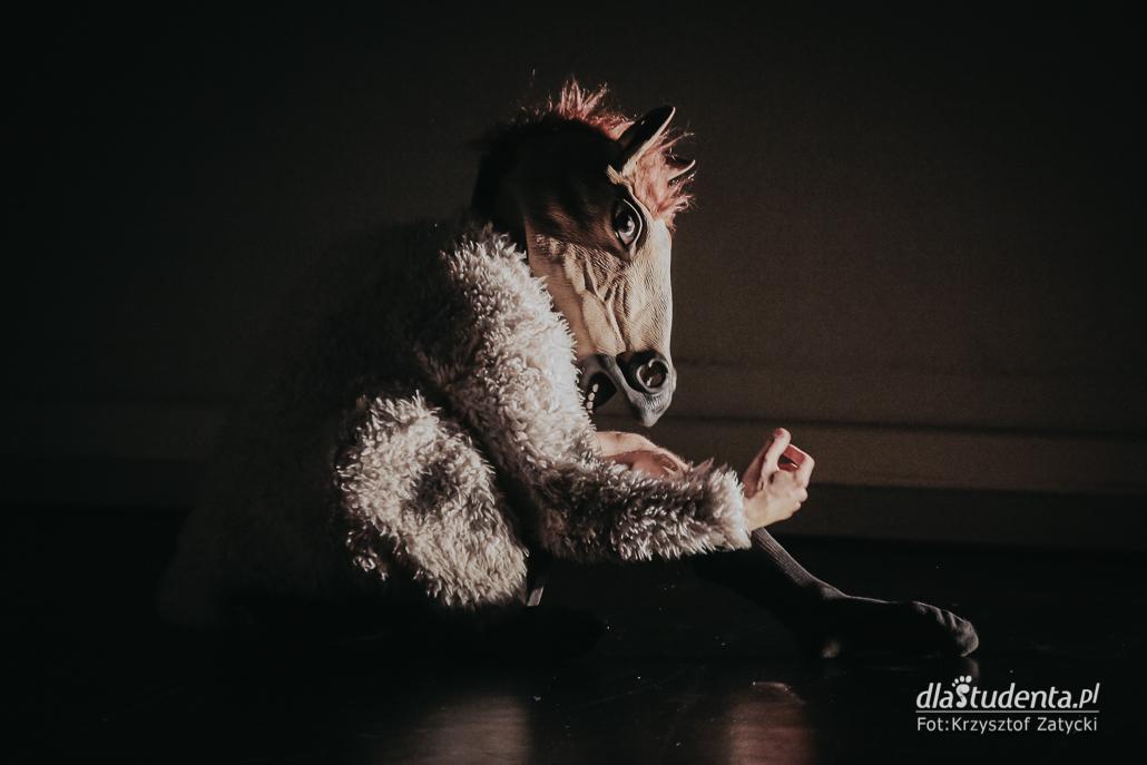 Mandala Performance Festival 2020 - dzieńdrugi - zdjęcie nr 6