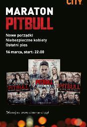 Maraton Pitbulla w Cinema City
