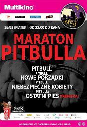 ENEMEF: Maraton Pitbulla w Multikinie