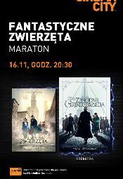 """Maraton """"Fantastycznych Zwierząt"""" w Cinema City"""
