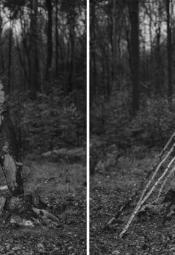 Prace leśne. Pomniki przyrody. Inwentaryzacja - wystawa towarzysząca TIFF Festival