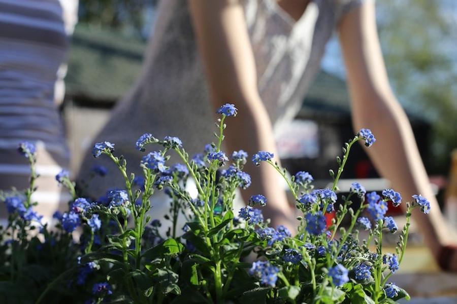 Tania aranżacja ogrodu lub balkonu - to możliwe!