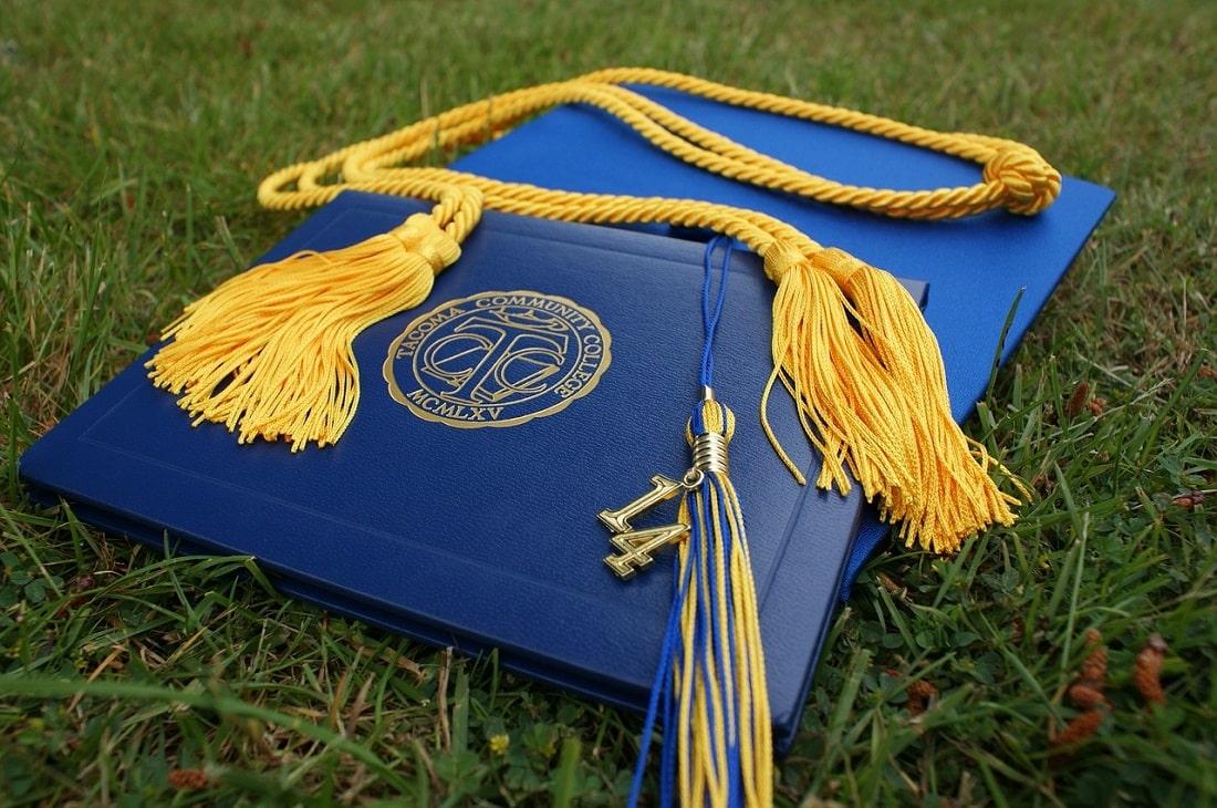 Dyplom na trawie
