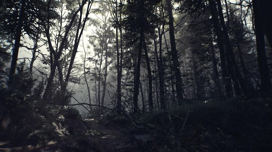 Las w grze Blair Witch