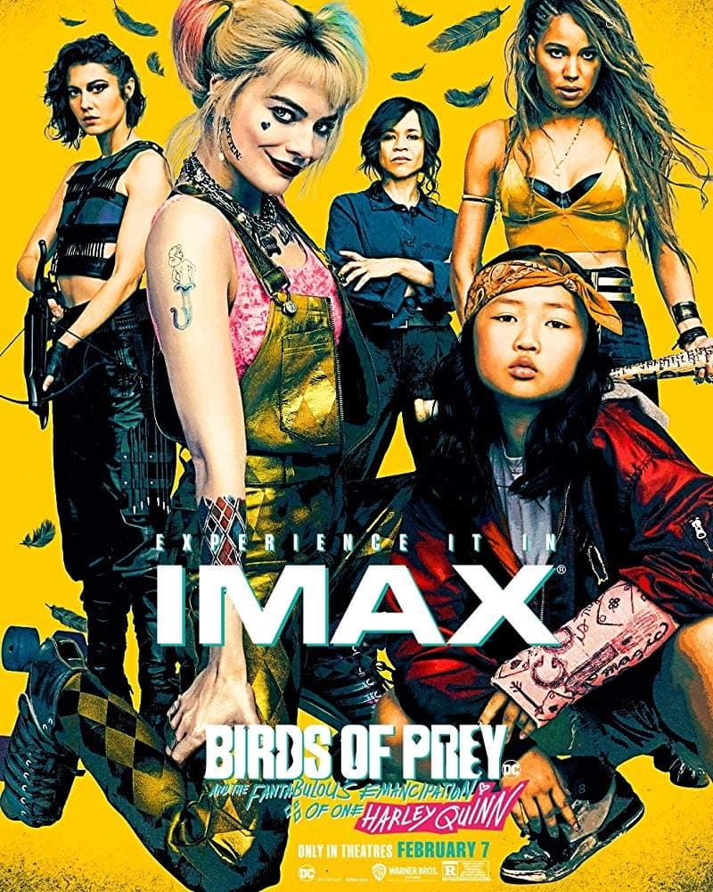 Ptaki Nocy w IMAX