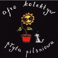 Płyta Pilśniowa