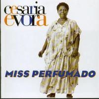 Miss Perfrumado