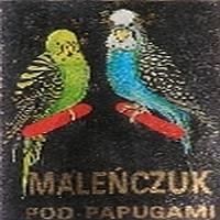 Pod Papugami