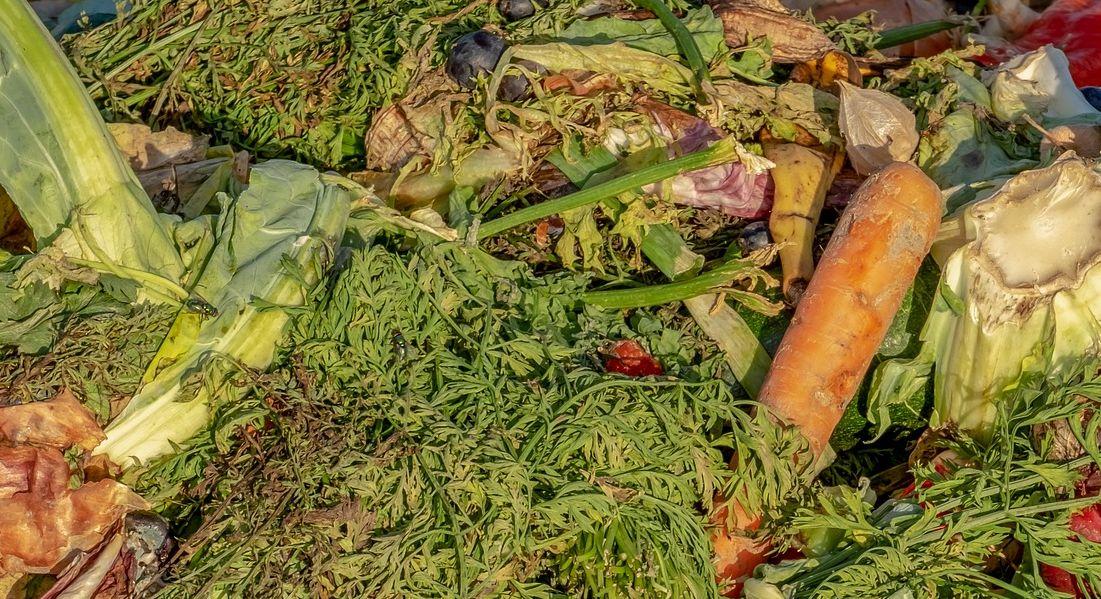 Co zrobić z nadmierną ilością żywności, która zostaje po świętach? Zamiast wyrzucać można oddawać produkty do banków żywności oraz przekazywać organizacjom pomocowym na terenie całej Polski, które zajmują się wspieraniem potrzebujących.