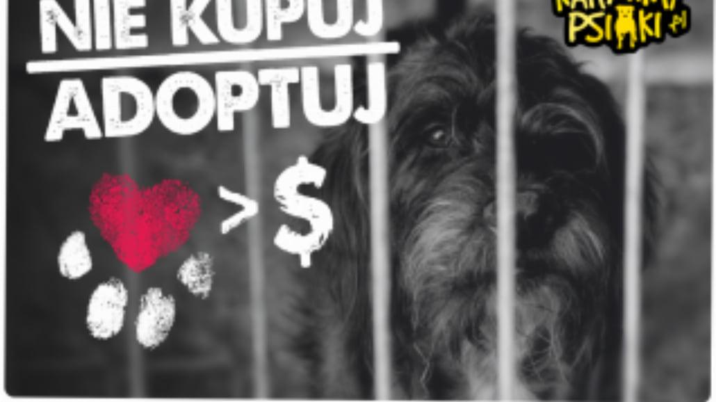 "Kampania społeczna ""Nie kupuj – adoptuj"""