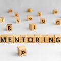 Na czym polega mentoring i dlaczego należy go stosować?