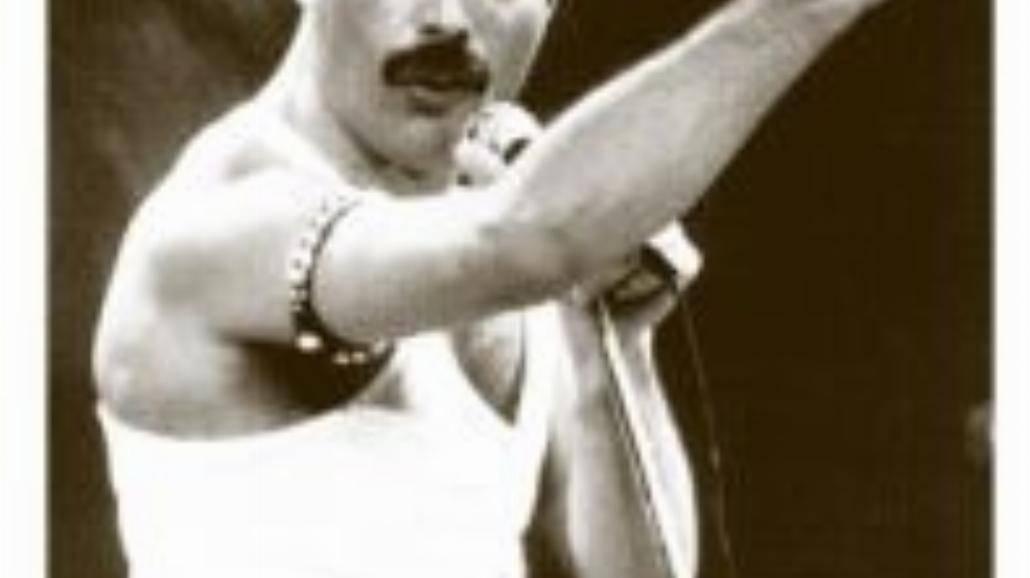 Freddie Mercury (5.09.1946 - 24.11.1991)