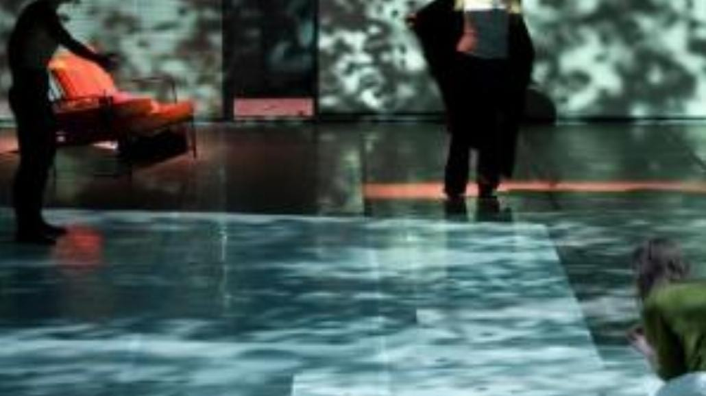 Widziałeś kiedyś zatopione hortensje?