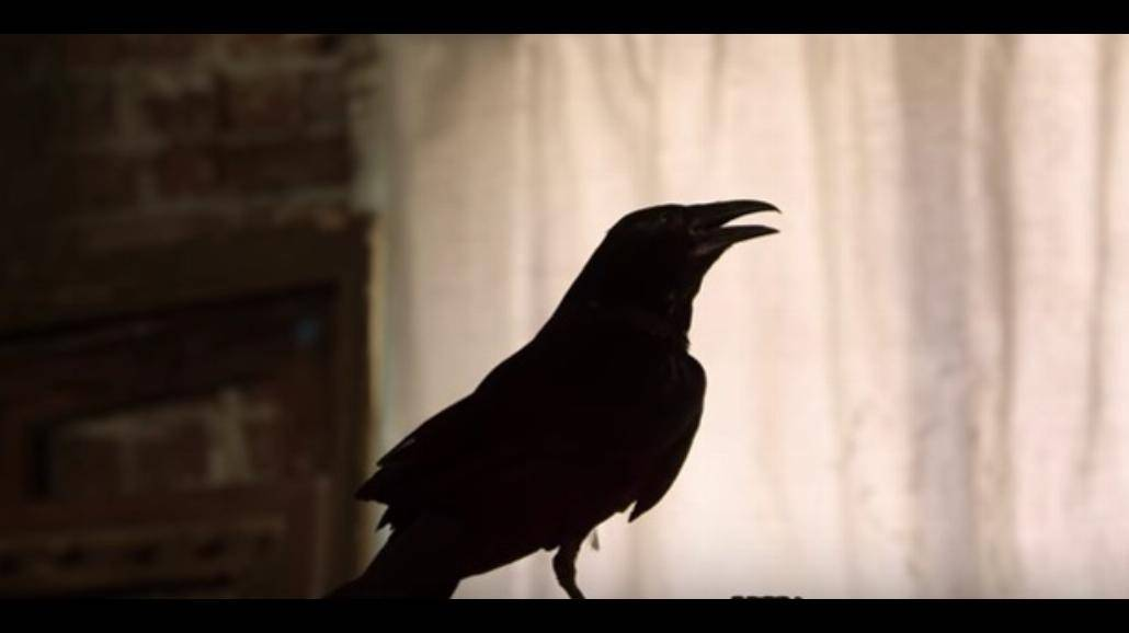 Korn powraca z kontrowersyjnym klipem! Premiera albumu już w październiku [WIDEO]