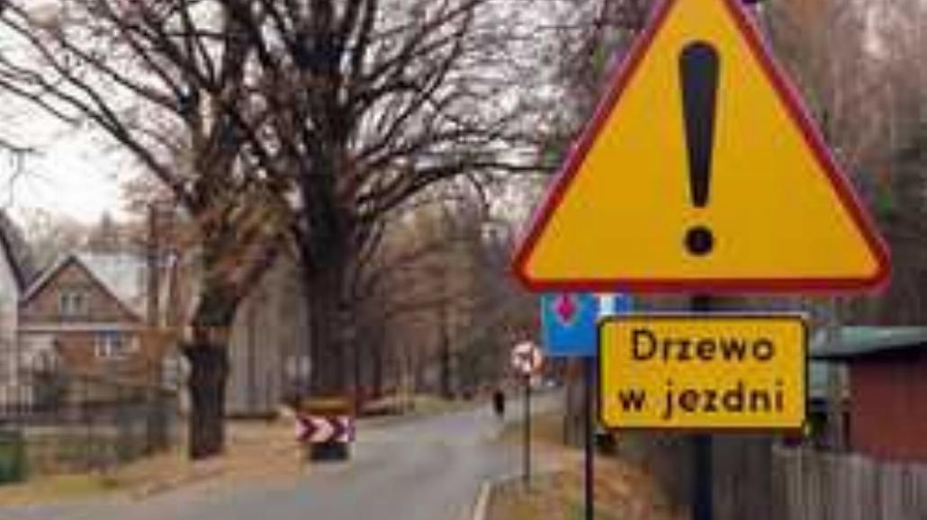 Szybcy i wściekli. Polscy ułani za kierownicą