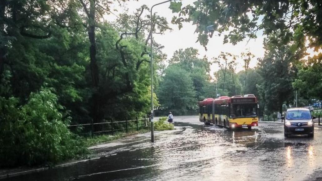 Wrocław po burzy [ZDJĘCIA]