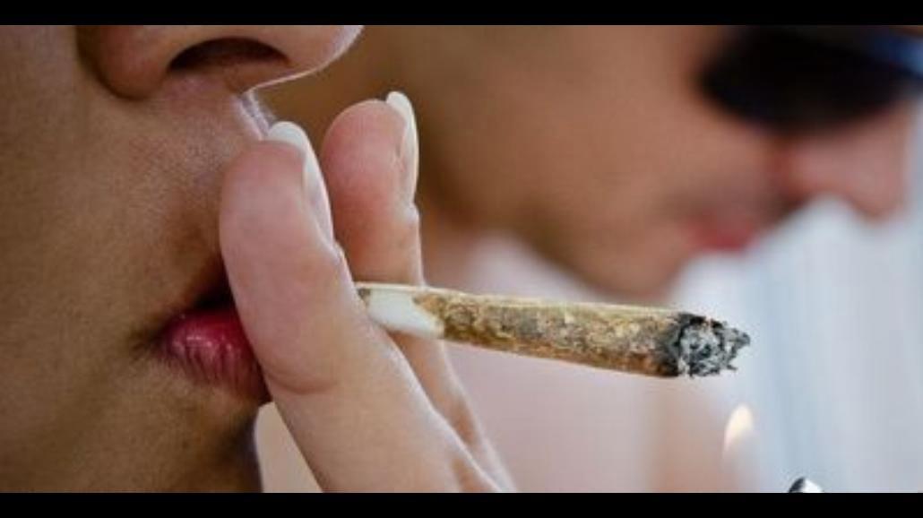 Słynni Polacy popierają legalizację marihuany!