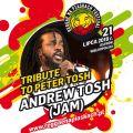 Andrew Tosh i Gutek gwiazdami Reggae na Piaskach 2018 - festiwal 2018, letnie festiwale 2018, koncerty, Ostrów Wielkopolski, reggae