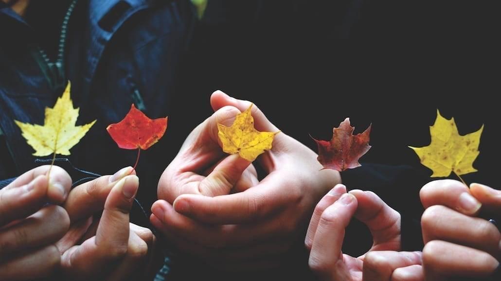 Jak jesień wpływa na twój organizm?