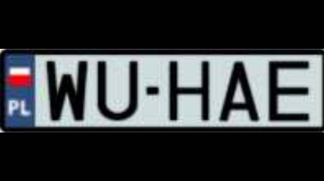 WU-HAE- nowy klip i nowe logo