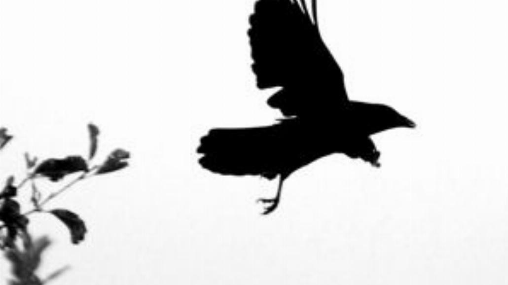 Nauka latania na skrzydłach lekkich planet
