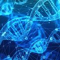 Matura biologia 2020 - matura 2017 2016 2015 2014 2013 2012 2011 2010 arkusze maturalne odpowiedzi klucz matura próbna