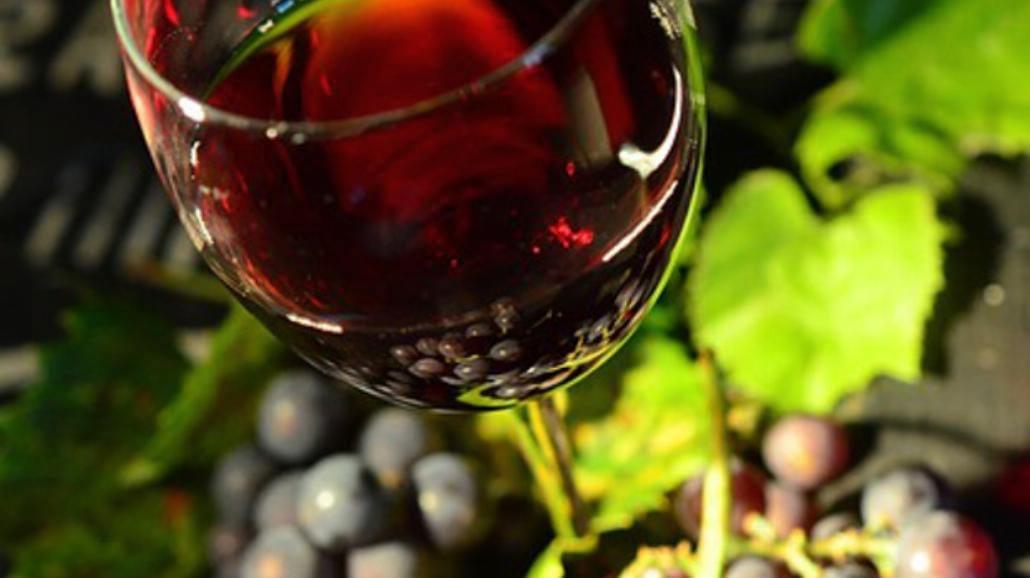 Jak zrobić wino? [WIDEO]