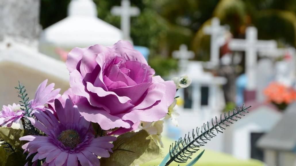 Zobacz, jakie kwiaty będą najlepszym wyborem na Wszystkich Świętych.